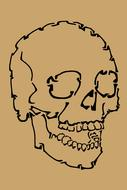 Drawn, black skull, at brown background, on clipart