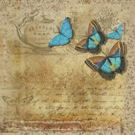 vintage paper with blue butterfly