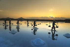 people walking with load through Salt fields at sunset, Vietnam, Hon Khoi