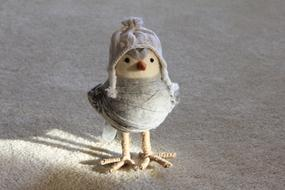 handmade Toy Bird in winter clothe