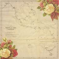 vintage background with map and roses