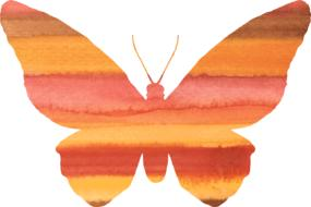 striped orange butterfly painted in watercolor