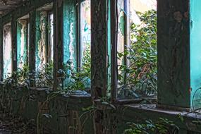 perfect Abandoned Old windows