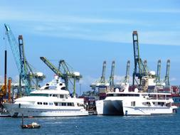 two luxury yachts in Harbor