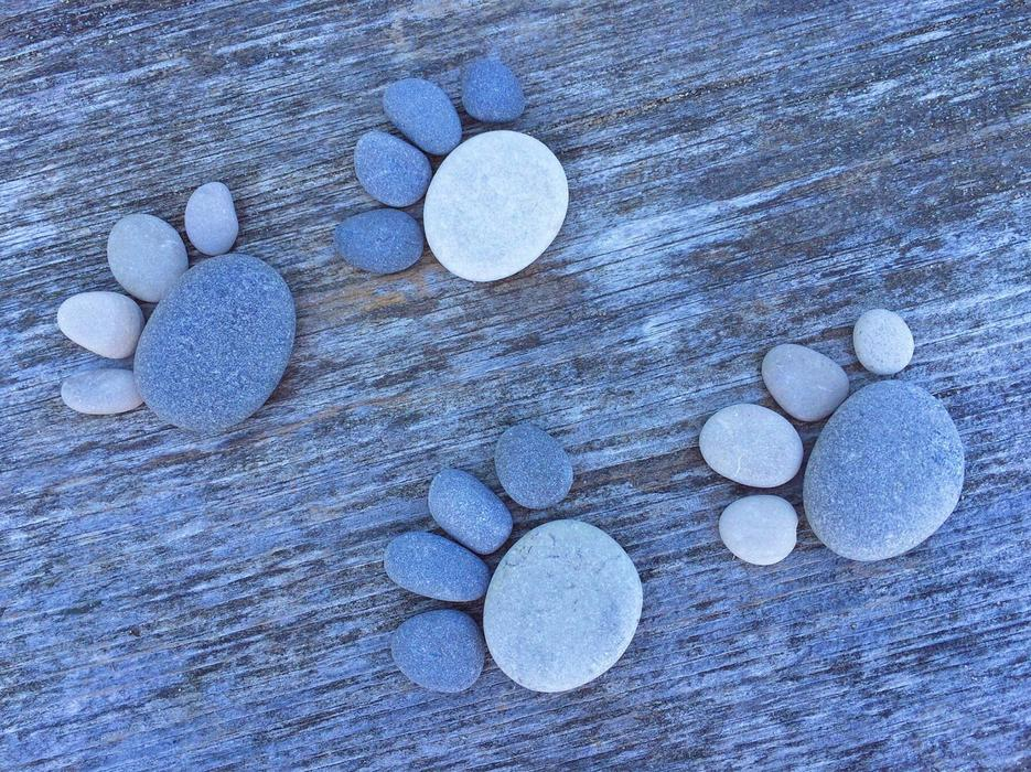paws made of stones