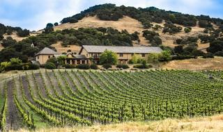 farm with Vineyard on hill side, usa, California