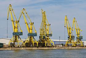 yellow Danube Cranes