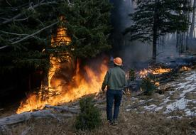 man looking at Wildfire in forest