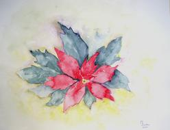 poinsettia flower plant painting