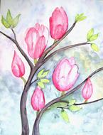 magnolia flowers painting drawing