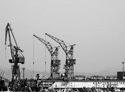 Cranes Construction black and white