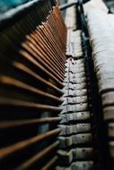 photo of keys in an old piano