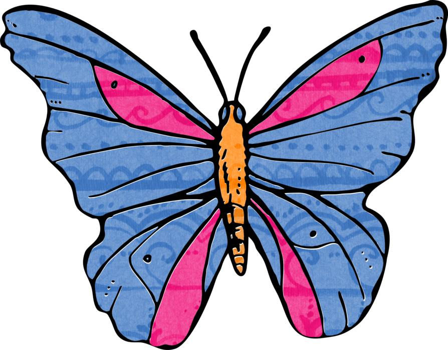 painted blue pink butterfly