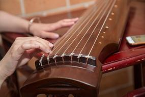 girl's hands on a stringed instrument