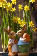 ceramic figurines of easter bunnies on a background of yellow daffodils