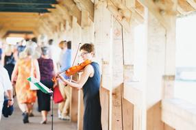 Violinist Wooden Bridge
