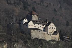 photo of a castle on a rock in Liechtenstein
