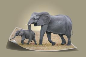 3D image of an elephant and a baby elephant in the photo