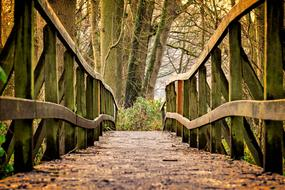 incredible Away Bridge Wood
