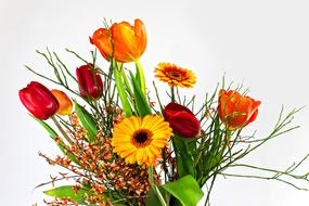 photo of a bouquet of tulips and gerberas