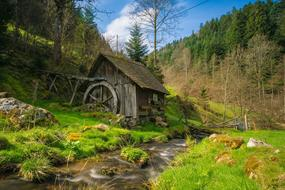 Mill Black Forest