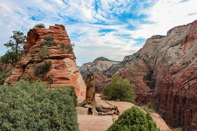 attractive Zion National Park