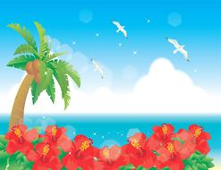 beach background hawaii drawing