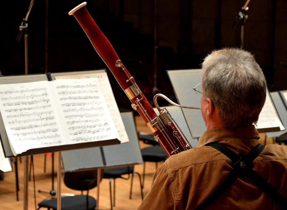 musician with a wind instrument in the orchestra