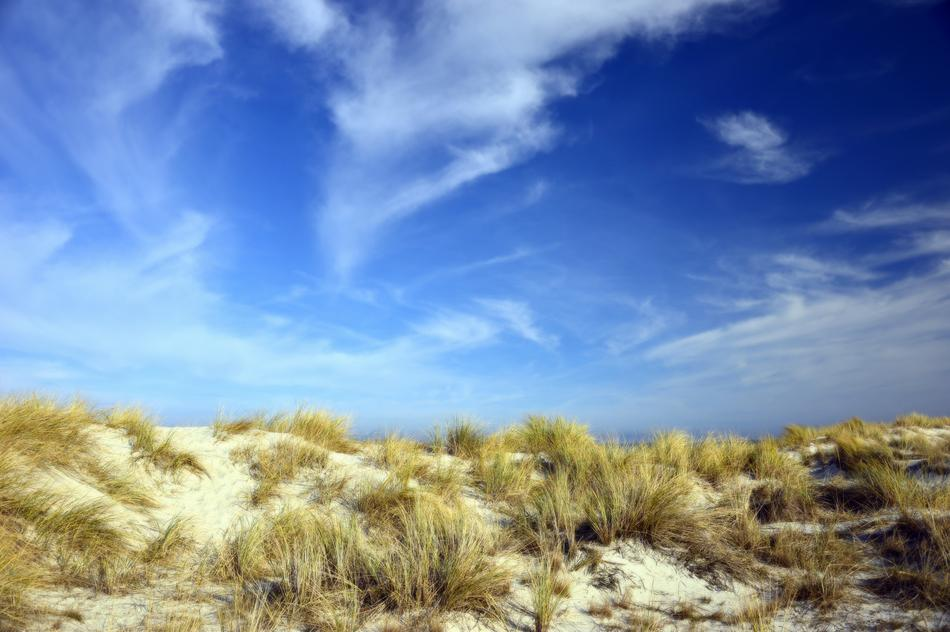 landscape of sand dunes with marram grass