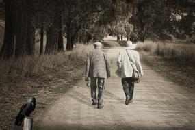 people Elderly walk