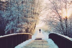 landscape of the snowy forest and Man is walking on a snowy Bridge