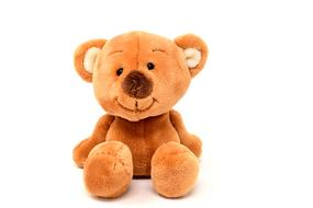 incredibly beautiful Teddy Soft Toy