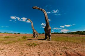 two figures of herbivorous dinosaurs in the park