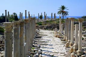 ruins site with columnar at sea, lebanon, tyre