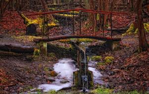 wooden bridge over a stream in the autumn forest