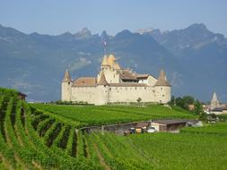 historical Aigle Castle in front of Mountains, switzwerland