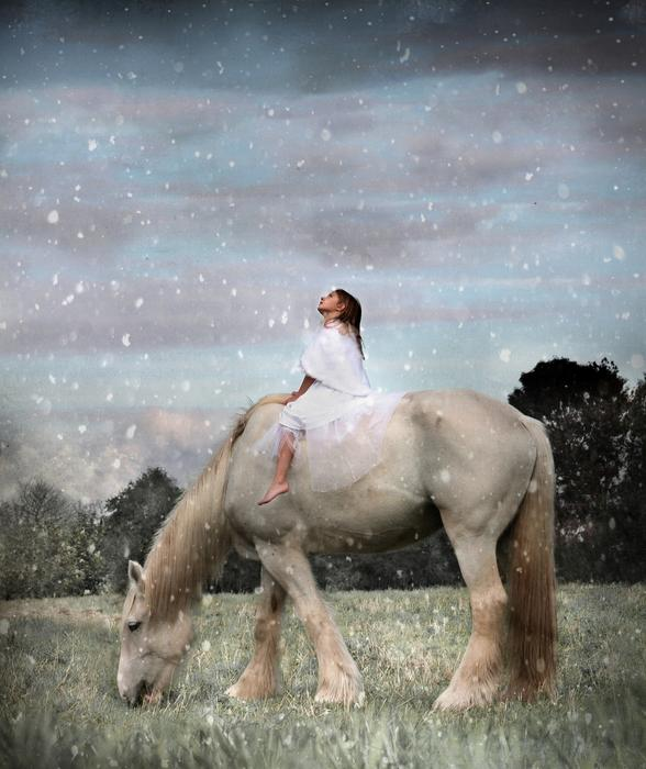 Winter Wonderland horse