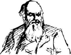 ravishing charles darwin evolution drawing