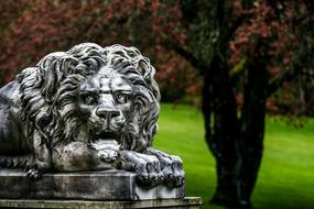 Lion Sculpture garden