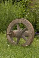 Old Wheel Cart and green grass