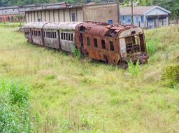 old train green grass