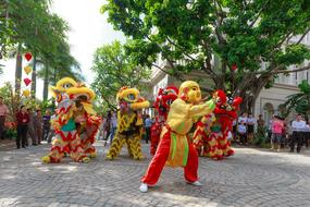 jumping lions in Vietnam