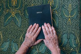 Old Elderly Hand and biblia