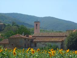Landscape Mountains church and flowers