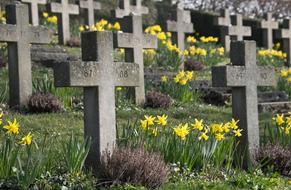 Cemetery Cross and yellow flowers