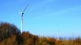 wind turbines among the autumn trees against the blue sky