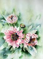 watercolour painting of flowers