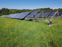 solar cells in row on meadow at summer