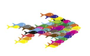 fish swarm together as an abstract illustration