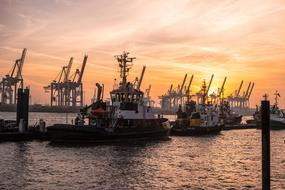 tugboats and cranes at the port in Hamburg